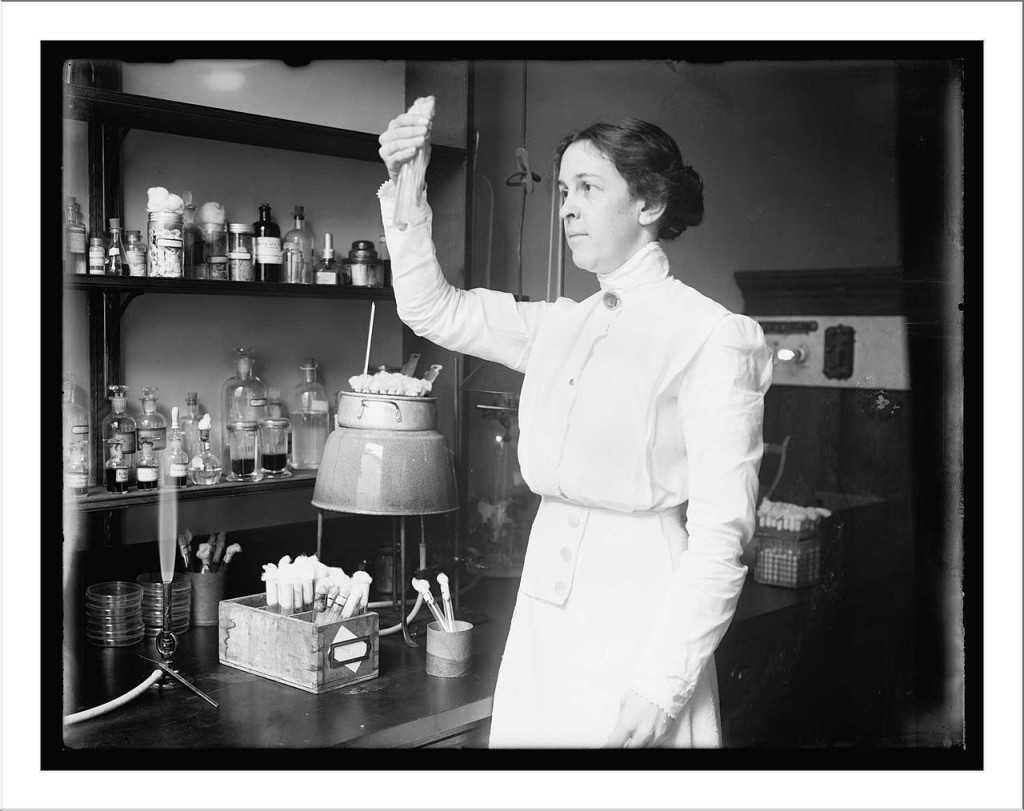 Alice Evans 1915 at work at the Department of Agriculture. Because of her research about raw milk Evans made one of the most significant medical discoveries of the 20th Century.